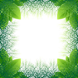 框架由绿色叶子和根做成 免版税库存图片