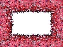 框架红色棘手的树干 库存图片