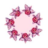 框架花卉desiged模板与水彩兰花花和叶子的 向量例证