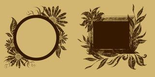框架被设置的向量葡萄酒 免版税库存图片