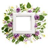 框架,装饰用各种各样的草甸植物和花 库存照片