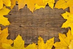 框架组成由在木土气backgr的五颜六色的秋叶 免版税图库摄影