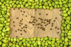 画框由在果壳和里面咖啡豆的绿色年轻核桃制成 免版税图库摄影