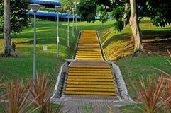 案件公园台阶tre 库存图片