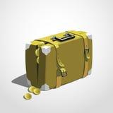 案件充分的货币 库存图片