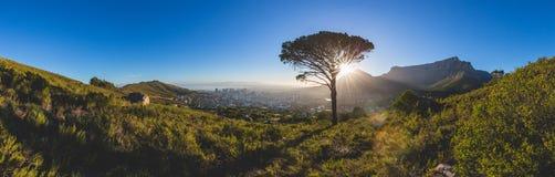 桌山全景在日出的开普敦 库存图片