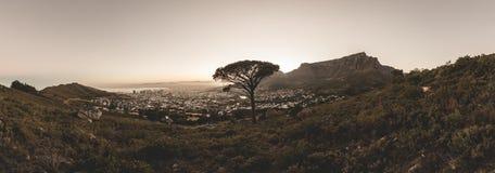 桌山全景在日出的开普敦 免版税库存照片
