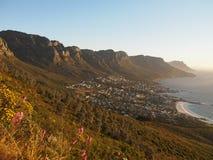 桌山国家公园视图,开普敦,南非 免版税库存照片