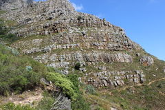 桌山国家公园,开普敦南非旅行墙壁  库存照片