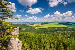 从桌山的风景视图 免版税库存图片