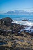 桌山,开普敦,南非,非洲 库存照片