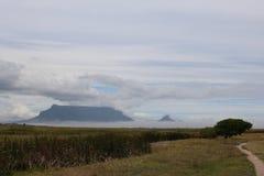 桌山从桌湾自然保护Rietvlei开普敦观看了 免版税库存图片