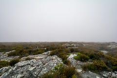 桌山ins开普敦,南非上面看法  库存照片