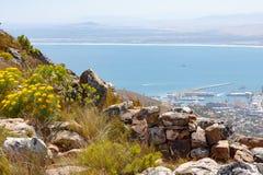 桌湾和开普敦港口从近的狮子拍摄了在开普敦,南非朝向 免版税图库摄影