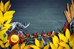 桌用秋叶和莓果装饰了 秋天 秋天背景特写镜头上色常春藤叶子橙红 免版税库存照片