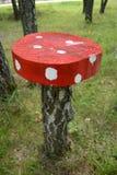 桌蘑菇 库存图片