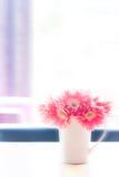 桌面花卉装饰 库存照片