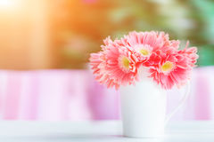 桌面花卉装饰 库存图片