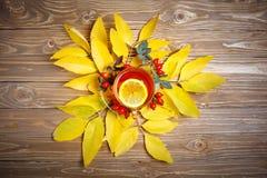 桌,装饰用秋叶、莓果和新鲜的茶 秋天 秋天背景特写镜头上色常春藤叶子橙红 免版税图库摄影