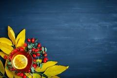 桌,装饰用秋叶、莓果和新鲜的茶 秋天 秋天背景特写镜头上色常春藤叶子橙红 库存照片
