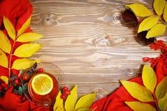 桌,装饰用秋叶、莓果和新鲜的茶 秋天 秋天背景特写镜头上色常春藤叶子橙红 图库摄影