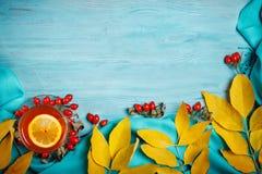 桌,装饰用秋叶、莓果和新鲜的茶 秋天 秋天背景特写镜头上色常春藤叶子橙红 免版税库存照片