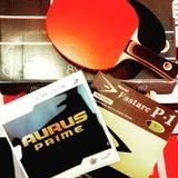 桌tenis生活 库存照片