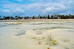 桑给巴尔视图海滩、海洋和天空 免版税库存图片