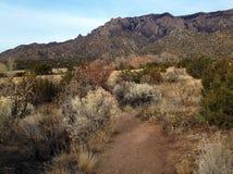桑迪亚山和山麓小丘 库存图片