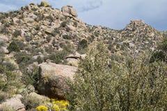 桑迪亚山,在Cibola森林上 库存图片