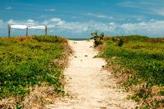 桑迪向叫作在巴西的东北部分的珊瑚海岸的海滩的脚道路阿拉戈斯状态的  库存照片