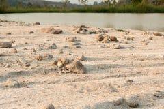 桑迪土壤 图库摄影