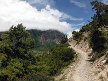 桑迪在绿色高喜马拉雅平原的山行迹 免版税库存图片