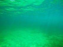 桑迪在绿色水下的海底在撒丁岛 免版税图库摄影