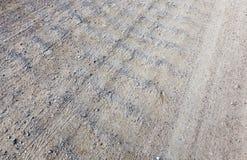 桑迪森林公路 库存图片