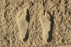 桑迪脚印 库存图片