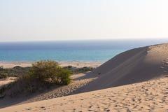 桑迪barkhans和海视图 Patara海滩 免版税图库摄影