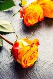 桔子上升了 上升了黄色 在花岗岩背景的几朵橙色玫瑰 免版税库存图片