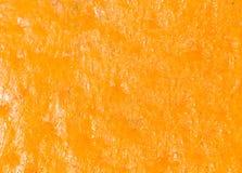桔子作为背景 2009朵超级花宏观的夏天 免版税图库摄影