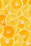 桔子和柠檬切片摘要 免版税图库摄影