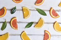 桔子和柠檬切片的样式 免版税库存照片