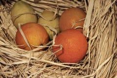 桔子和柠檬在干草 免版税库存图片