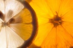 桔子和柠檬极端特写镜头  库存图片