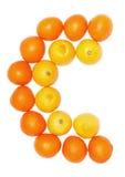 桔子和柠檬果子 库存图片