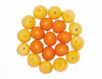桔子和柠檬果子 免版税图库摄影