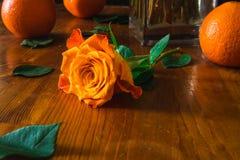 桔子和橙色玫瑰在木桌上 免版税库存照片