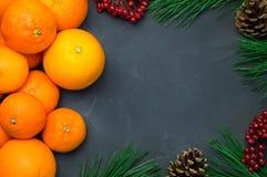 桔子和蜜桔与分支圣诞树和ashberry在具体背景 免版税库存照片