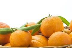 桔子和蜜桔在白色背景隔绝的篮子 C 免版税图库摄影