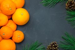 桔子和蜜桔有分支圣诞树黑色混凝土背景 库存图片