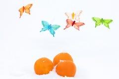 桔子和蝴蝶装饰在雪 库存照片